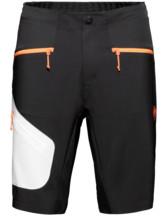 Sertig Shorts Men