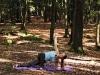 yoga-3x3-im-wald