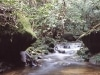 malaysia-andi-1