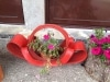 montenegro_2014_s_haubold-19