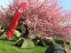 Robens-Zelt, grundsolide aber nicht mehr ganz so leicht