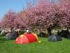 Das Areal für Helsport-Zelte