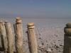 Salzsee in der Camargue