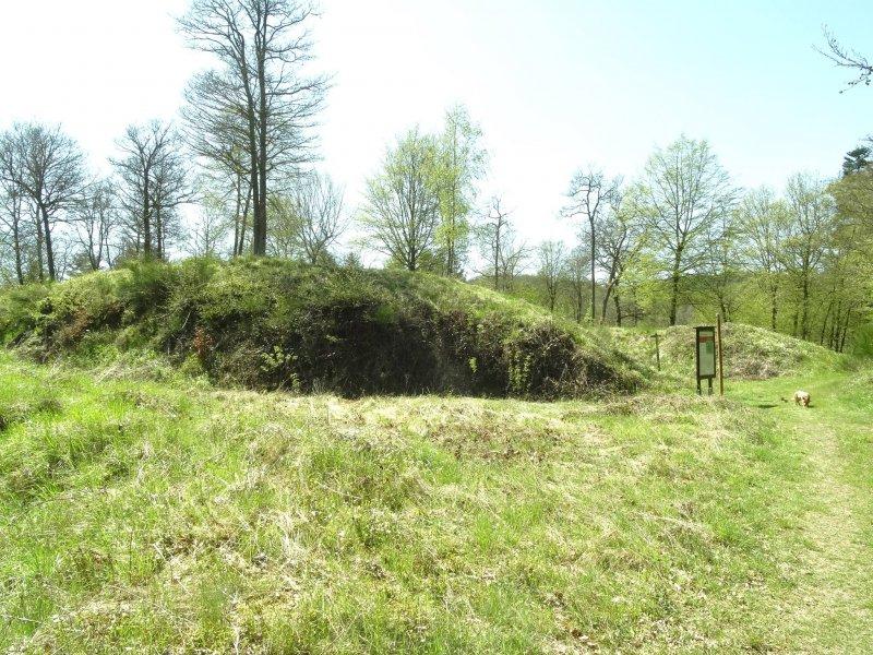 Ruine Geißenburg besticht zwar nicht durch viel Gemauertes, aber mächtige Wälle