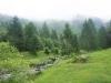 Rumänische Wälder