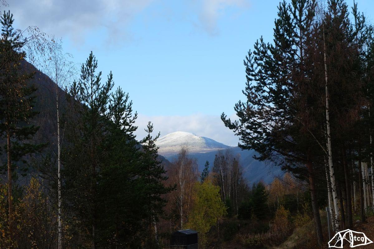 Blick auf den Snøhetta im Dovrefjell.