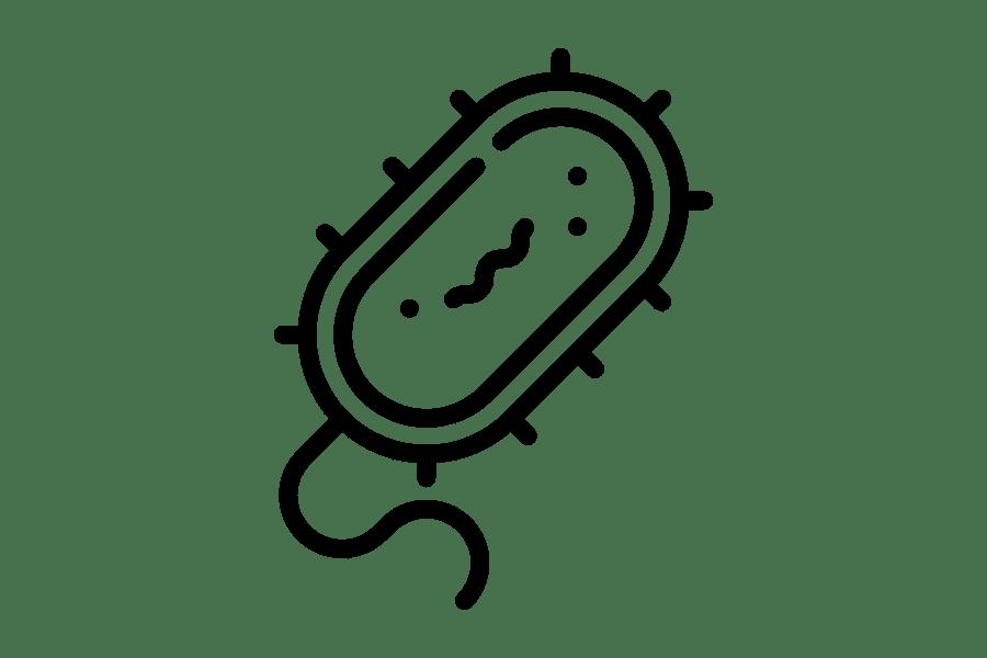 Piktogramm - Bakterien