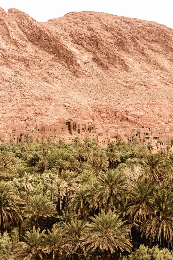 In meiner Phantasie hatte ich die Reise nach Marokko schon angetreten. Malojas Plan ging also auf. Alle Fotos: Maloja