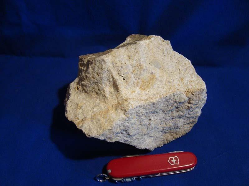 stein09