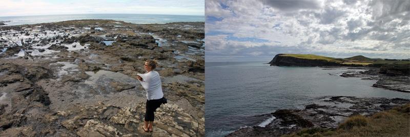 In Catlins Curio Bay fragten wir uns: Wo sind die Pinguine?