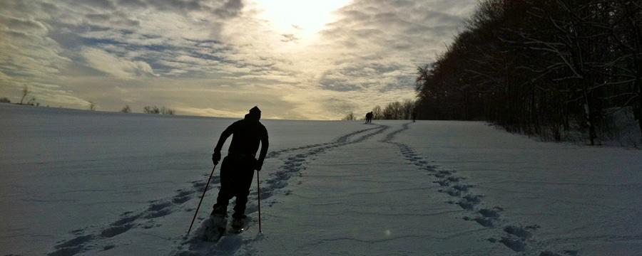 Auf leisen Sohlen durch die ewige Stille: Schneeschuhwandern