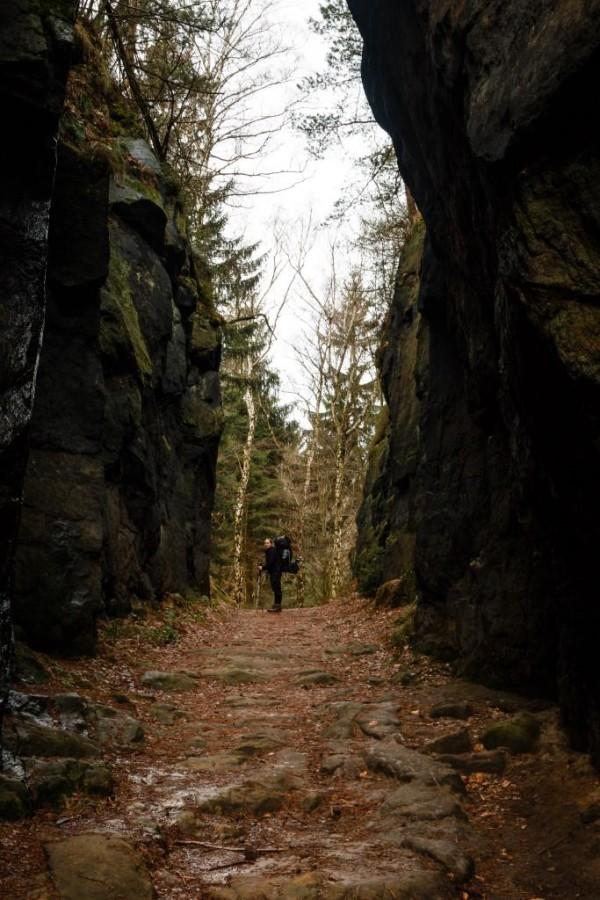 Felsschlucht im Elbsandsteingebirge