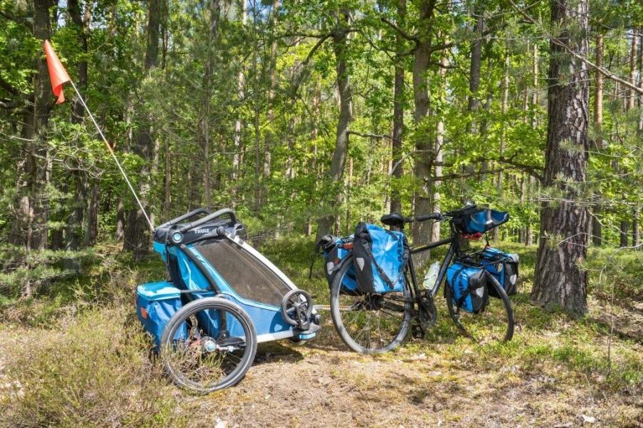 Mit dem Fahrrad durch brandenburgische Wälder